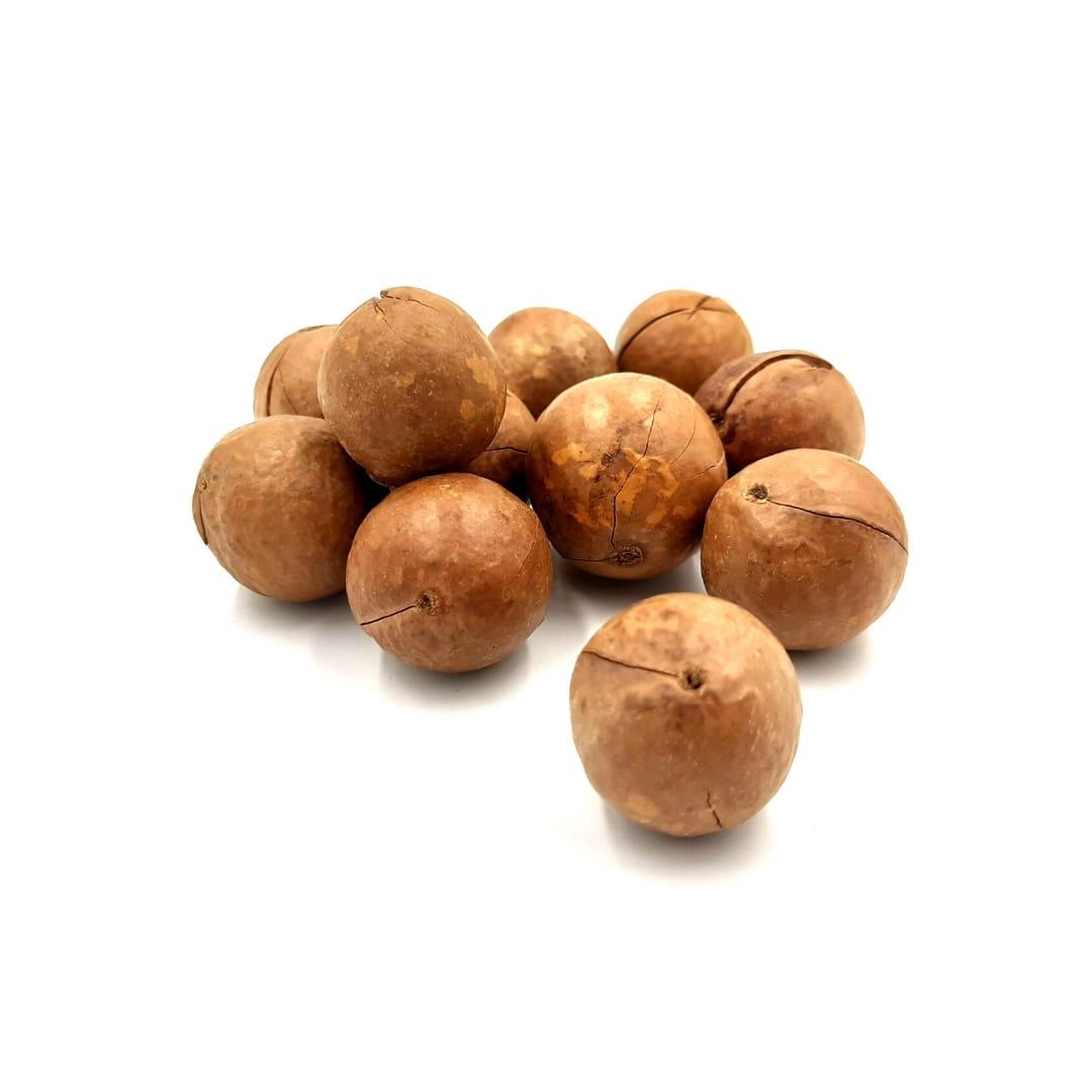Noci macadamia in guscio tostati – Sfuso